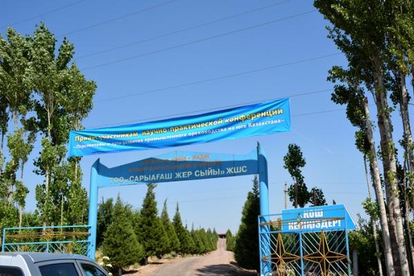 shymkent-kz-16A6EC9115-DDAC-76A3-1377-AF13237C11E0.jpg