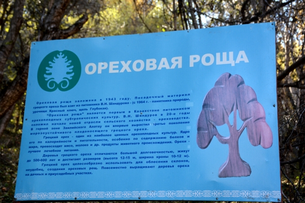 talgar-walnut-grove-2E0125291-4C03-48A7-F5A2-CA30BD049CD9.jpg